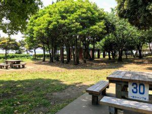 城南島海浜公園キャンプ場で焚き火