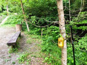 日影沢キャンプ場でキャンドルランプを使う